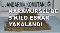 Karamürsel'de 5 Kilo Esrar Yakalandı