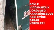 Karamürsel'de Kedi Evine Zarar Verdiler